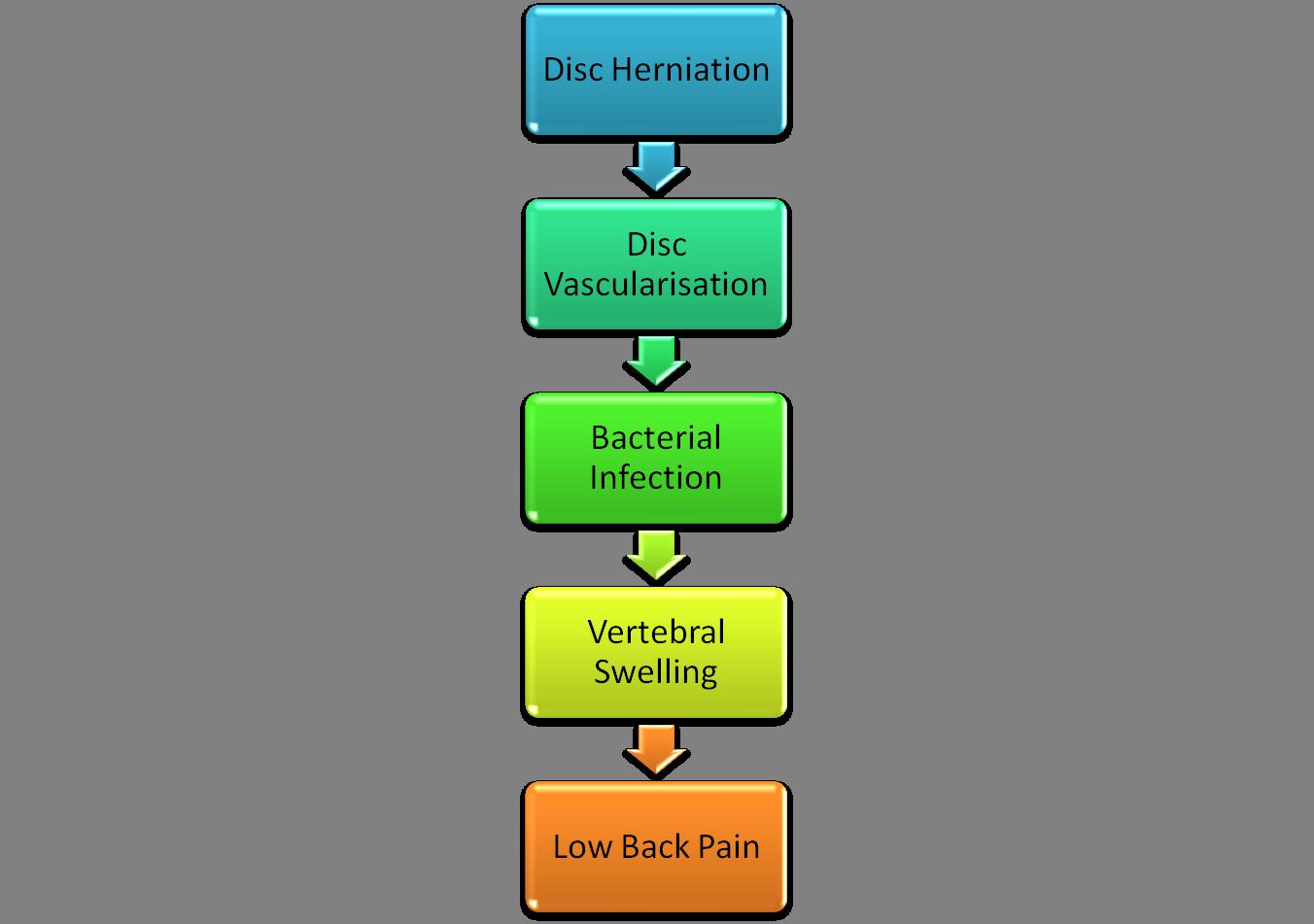 Antibiotics and LBP